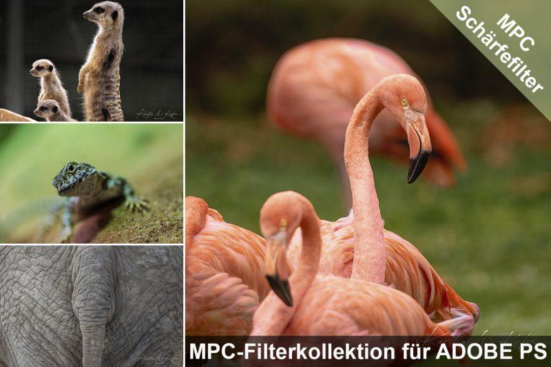 MPC Schärfe-Filter für Adobe-Photoshop